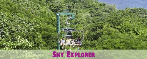 Rainforest Sky Explorer