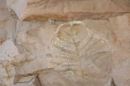 Cave paintings near Loreto, Mexico