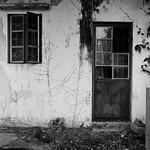 Window and Windowed Door