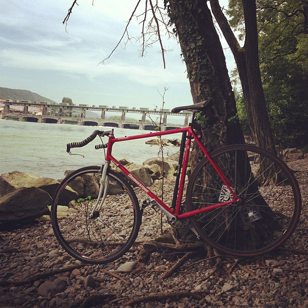 Rocky beach along the Rhine. Biking takes you amazing places. #switzerland #cycling