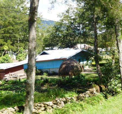 Papou13-Wamena sud-Sugokmo (29)
