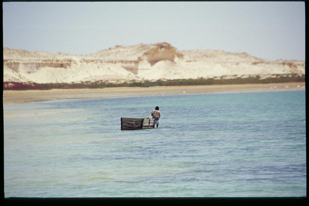 Mauritanie - Banc d'Arguin - Retour de la pêche