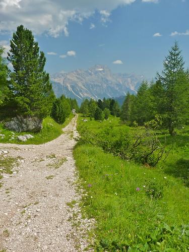 Panorama da sentiero 439