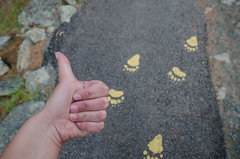 Thumbs up for paw prints
