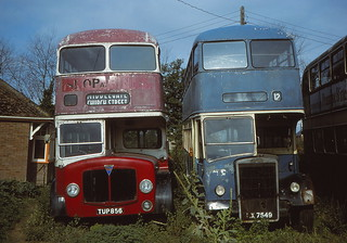 Looking back... More East Anglian bus & coach photos from the archives P1B (c) David Bell