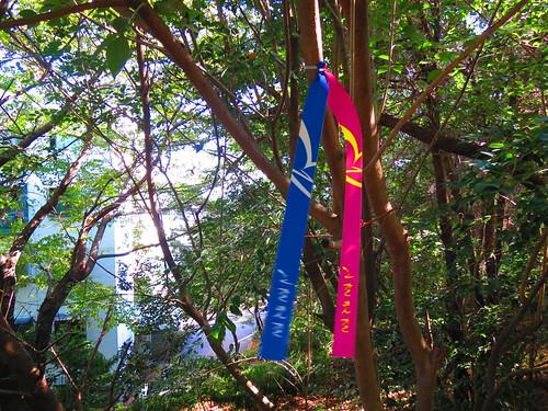 Busan Galmeat Gil Trail Number 3