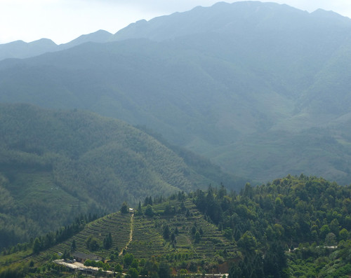 Fujian-Tulous-Hakkas-Tour-Tianluoken (45)