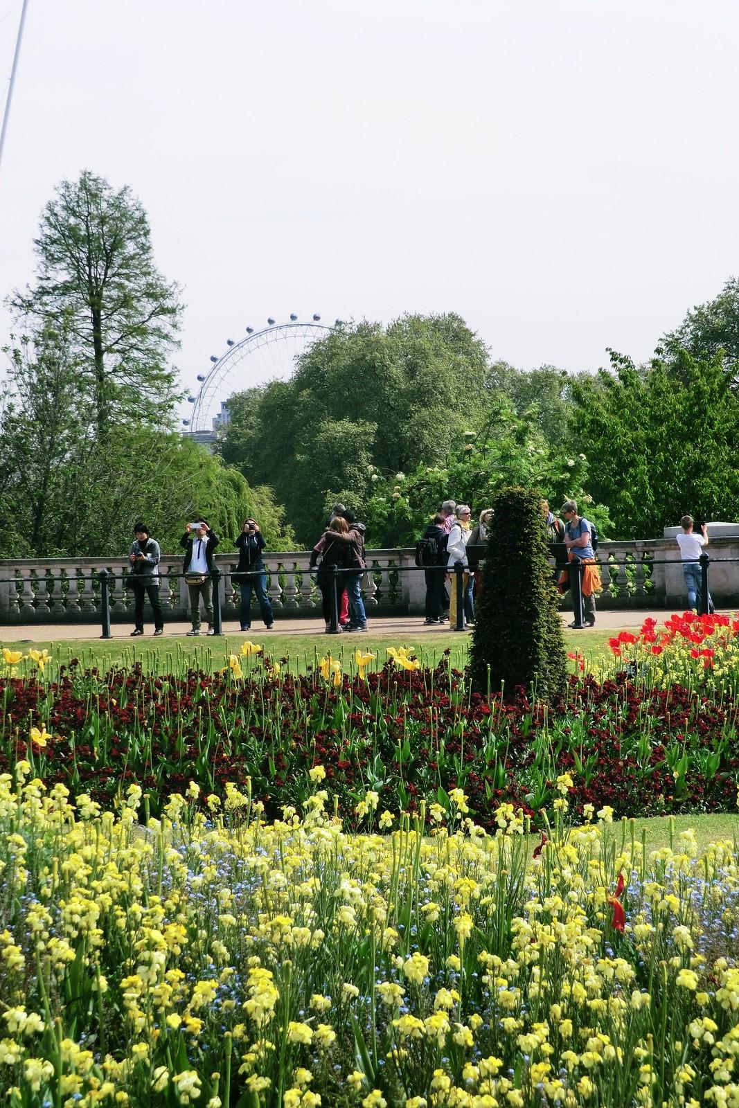 Glimpse of London Eye from Buckingham Palace