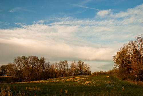 blue sky tree grass clouds landscape spring hill indiana goldenhour d80