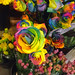 'Rainbow roses' for sale on Mother's Day in Granville Market