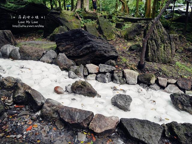 陽明山一日遊景點推薦前山公園 (22)