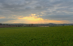 Fields and sun rays hdr