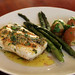 grilled halibut_01