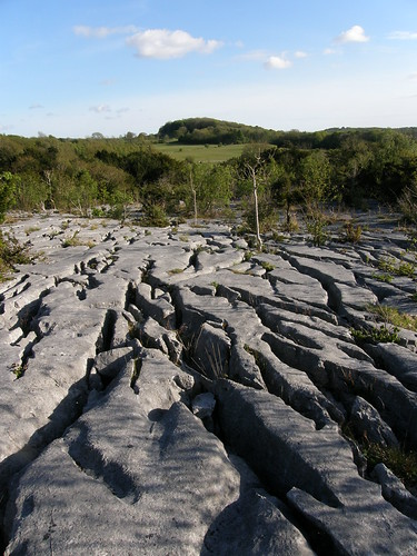 Gaitbarrows limestone pavement