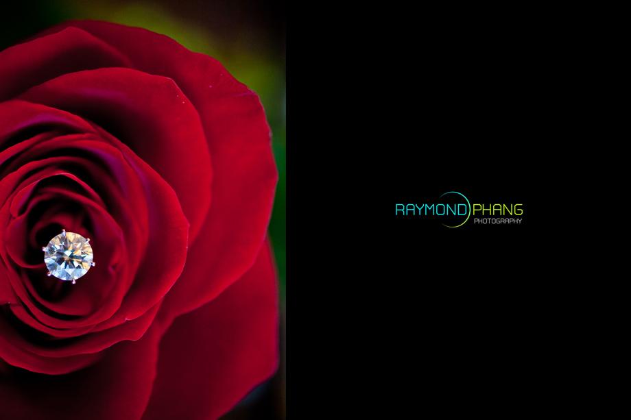 RaymondPhangPhotography - 037