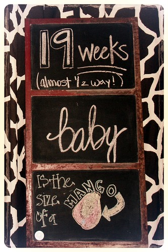 19 weeks = mango