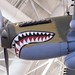 Shark Teeth Plane