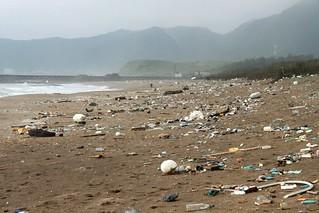 2013年初,台灣環境資訊協會至國聖埔海灘場勘實照