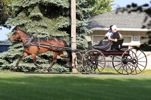 IMG_0196_Amish_Buggy