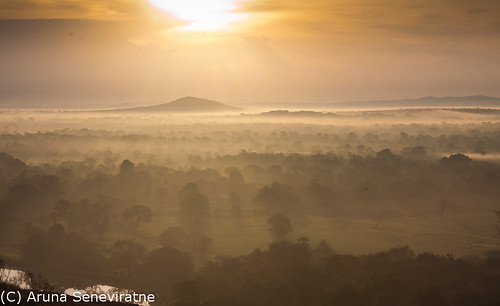 morning light sky sun mist clouds sunrise landscape dawn golden scenery scenic first scene snap rays srilanka scape scenics dwan olétusfotos arunaseneviratne arunasene