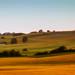 Scania Landscape by Rutger Blom