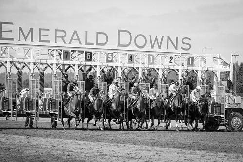seattle horse race speed flickr favorites auburn buddy jockey views wa horseracing emeralddowns nikondslr nikon7100