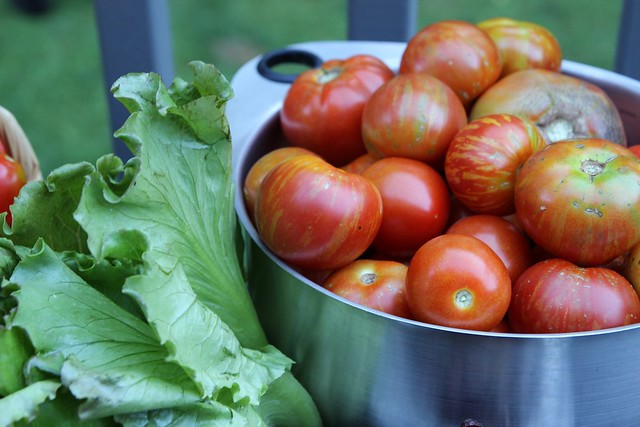 csa share :: week 9 + a late night tomato date.....