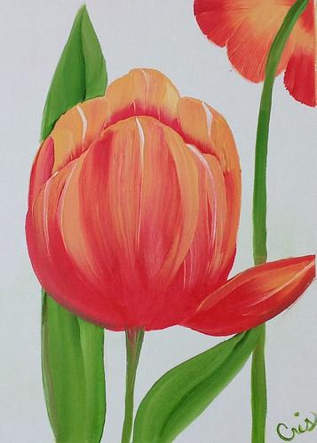 donna-tulip