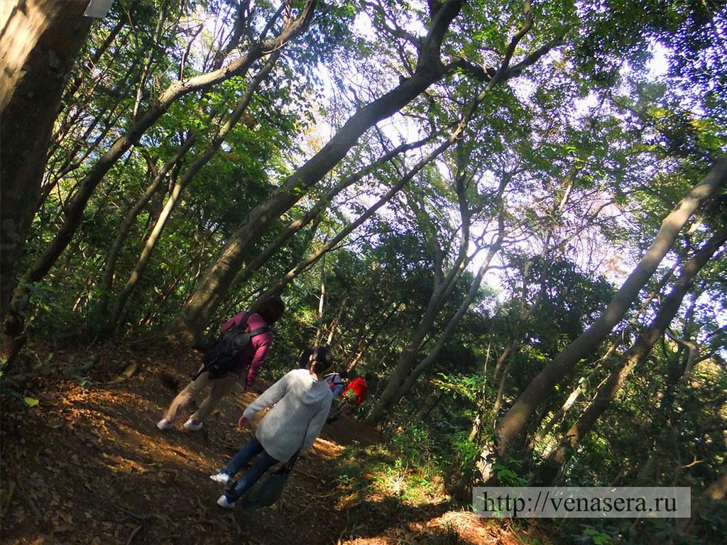 Гора Такао - спуск