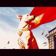 Top 10 Super-Dogs, today at www.LongboxGraveyard.com. #comics #SBTU #woof!