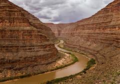 Lower San Juan River (5-12-15 - 5-16-15)