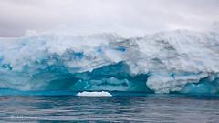 Antarctic Glacial Ice