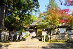 Photo:Saimyo-ji, Omotemon (Gate) -1 (November 2016) By Tetsuhiro Terada