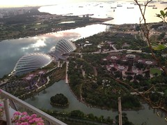 View of Gardens by the Bay from Marina Bay Sands Hotel Singapore 2016