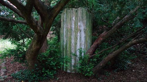 deepwoods by Nature Morte