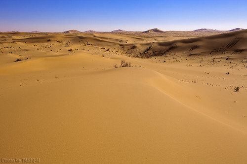 The Dunes by TARIQ-M