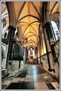 Salisbury Cathedral 8