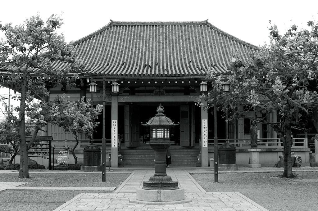 恵日山観音寺|観音堂