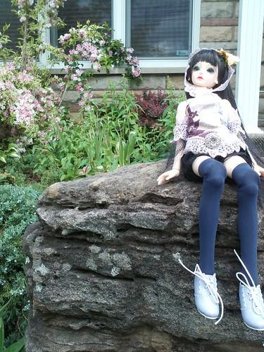 ma première BJD(doll leaves flora) 8997090285_3e72f5f705