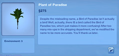 Plant of Paradise
