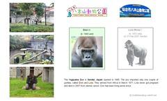 Gorilla: Don