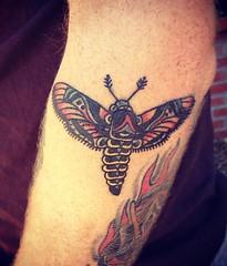 matus tattoo
