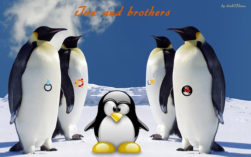tux_an_brothers