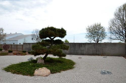 park trees tree landscaping parks evergreen springfieldmissouri springfieldmo 2015 meditationgarden japanesestrollgarden mizumotojapanesestrollgarden