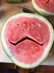 Genetically engineered mustached watermelon ?!