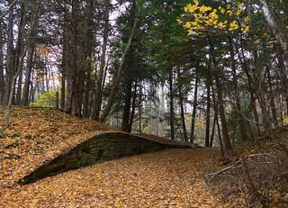 fall retrospective
