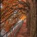 Autumn always beautiful