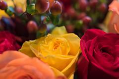Bold holiday floral arrangement
