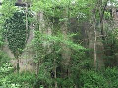 Ancienne centrale électrique de Faymoreau