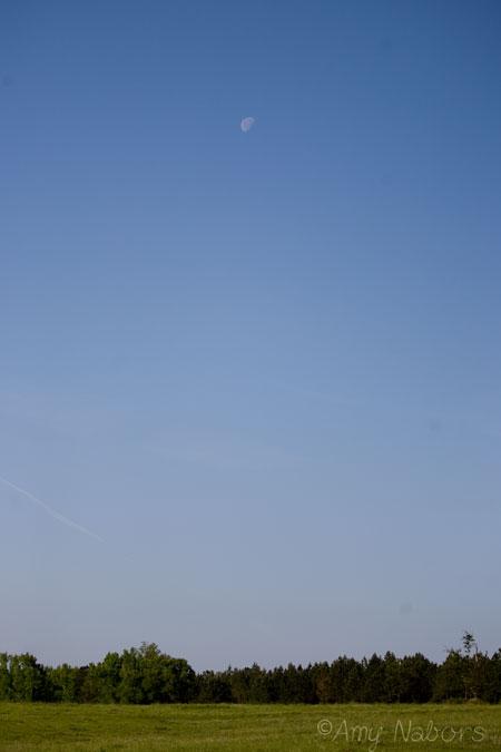 Apr112012_0051